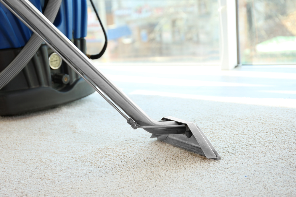 Carpet Steam Washing for Residential and Commercial Spaces - Zanjani Cleaning Services - Cleaners in Calgary