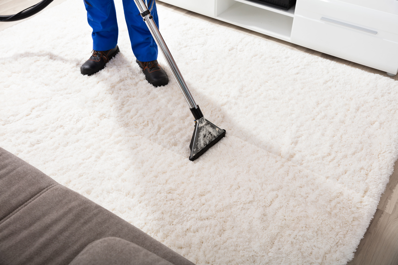 How to Keep Your Carpets Clean at Home - Zanjani Cleaning Service - Cleaning Service Calgary