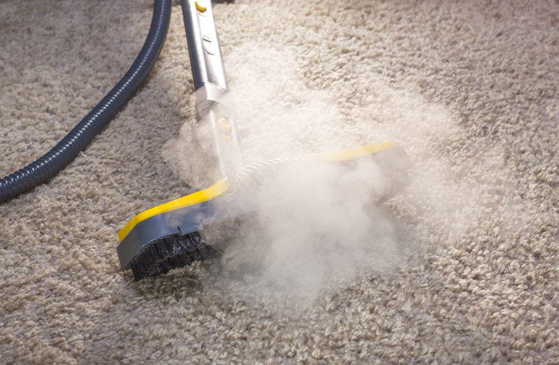 Why You Need to Steam Clean Your Carpet - Zanjani Cleaning Service - Commercial Cleaning Calgary