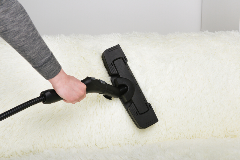 Prepare for Autumn with a Carpet Steam Cleaning - Zanjani Cleaning Service - Janitorial Service Calgary - Featured Image