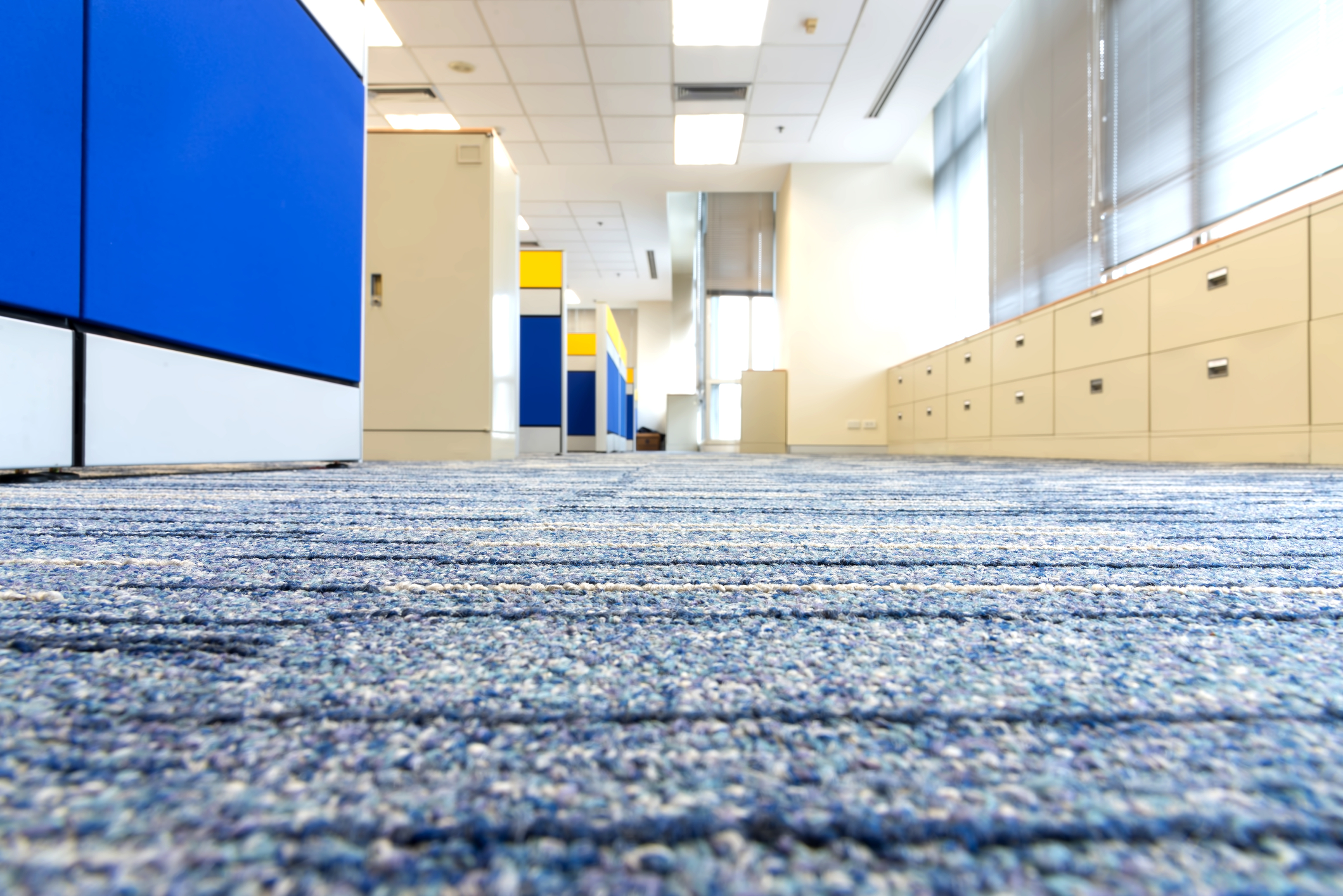Carpets: Deep Cleaning the Debris